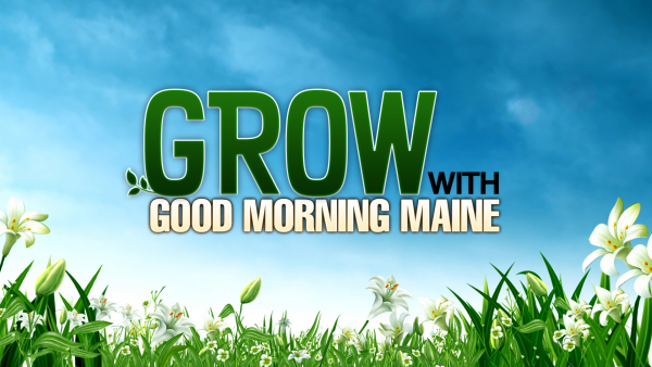 Grow with Good Morning Maine: Part 13