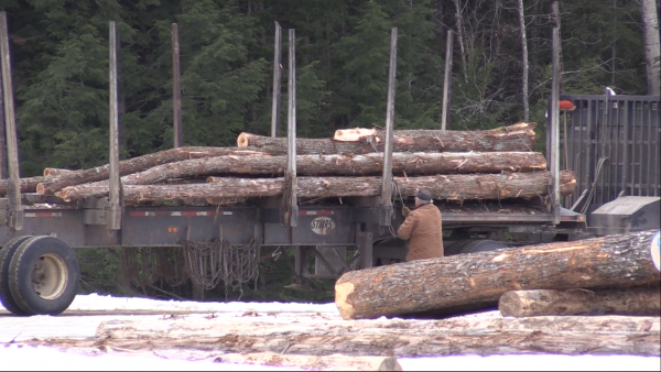 Maine forest industry focus of April summit