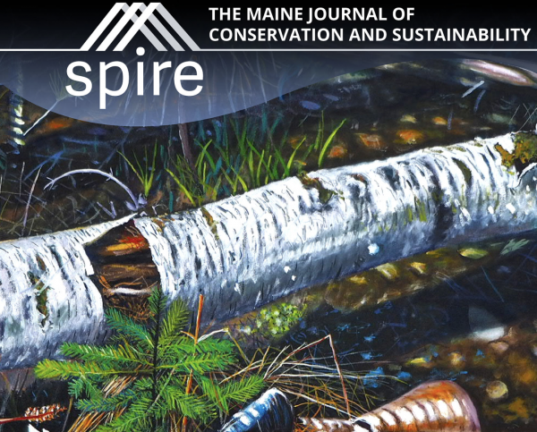 "Fifth issue of UMaine's ""Spire"" Journal to be released on Earth Day"