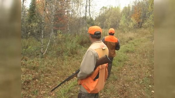 Bills aims to allow hunting on Sundays
